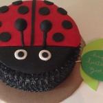 a ladybug for zoe