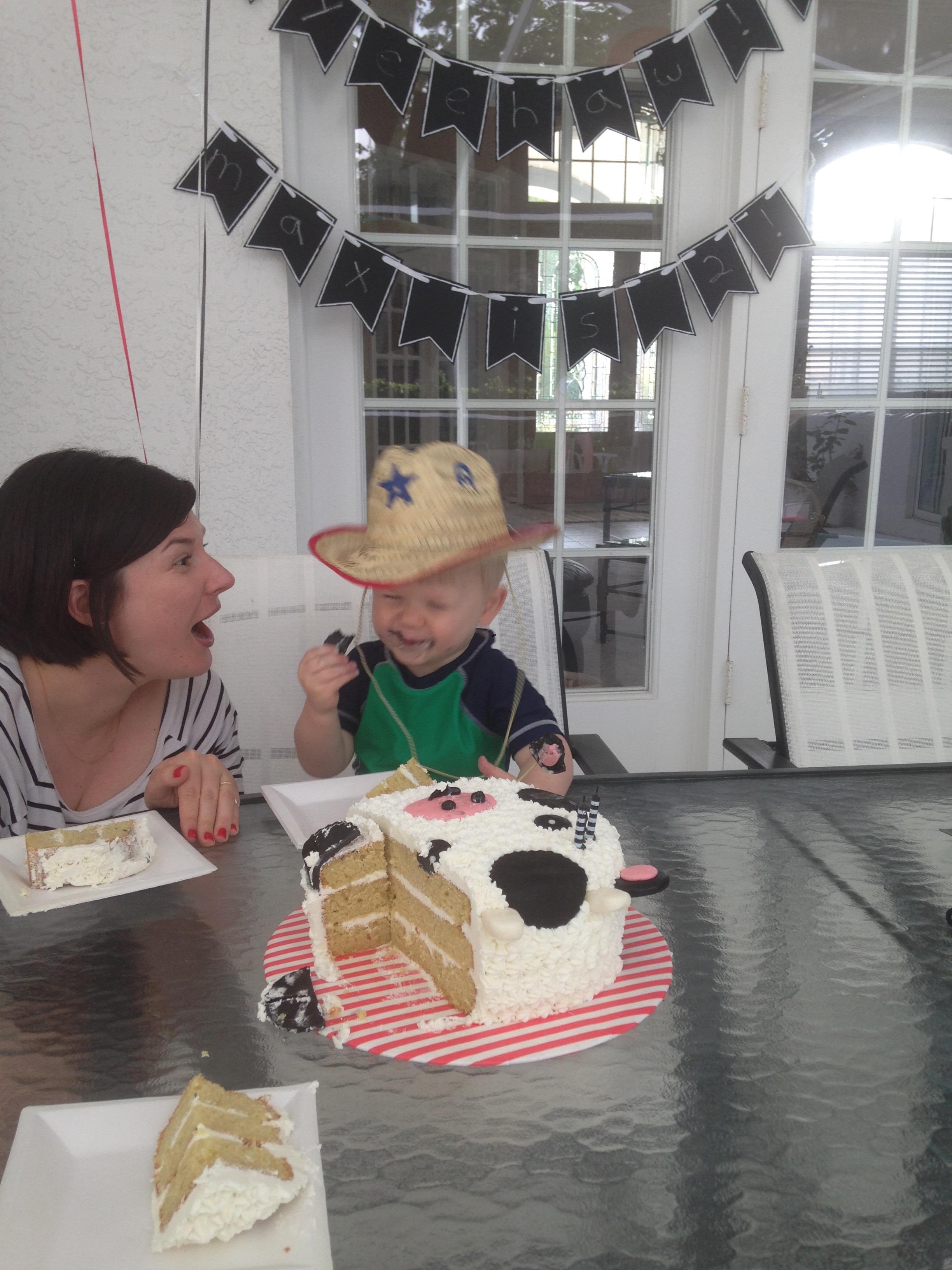 cow cake 2