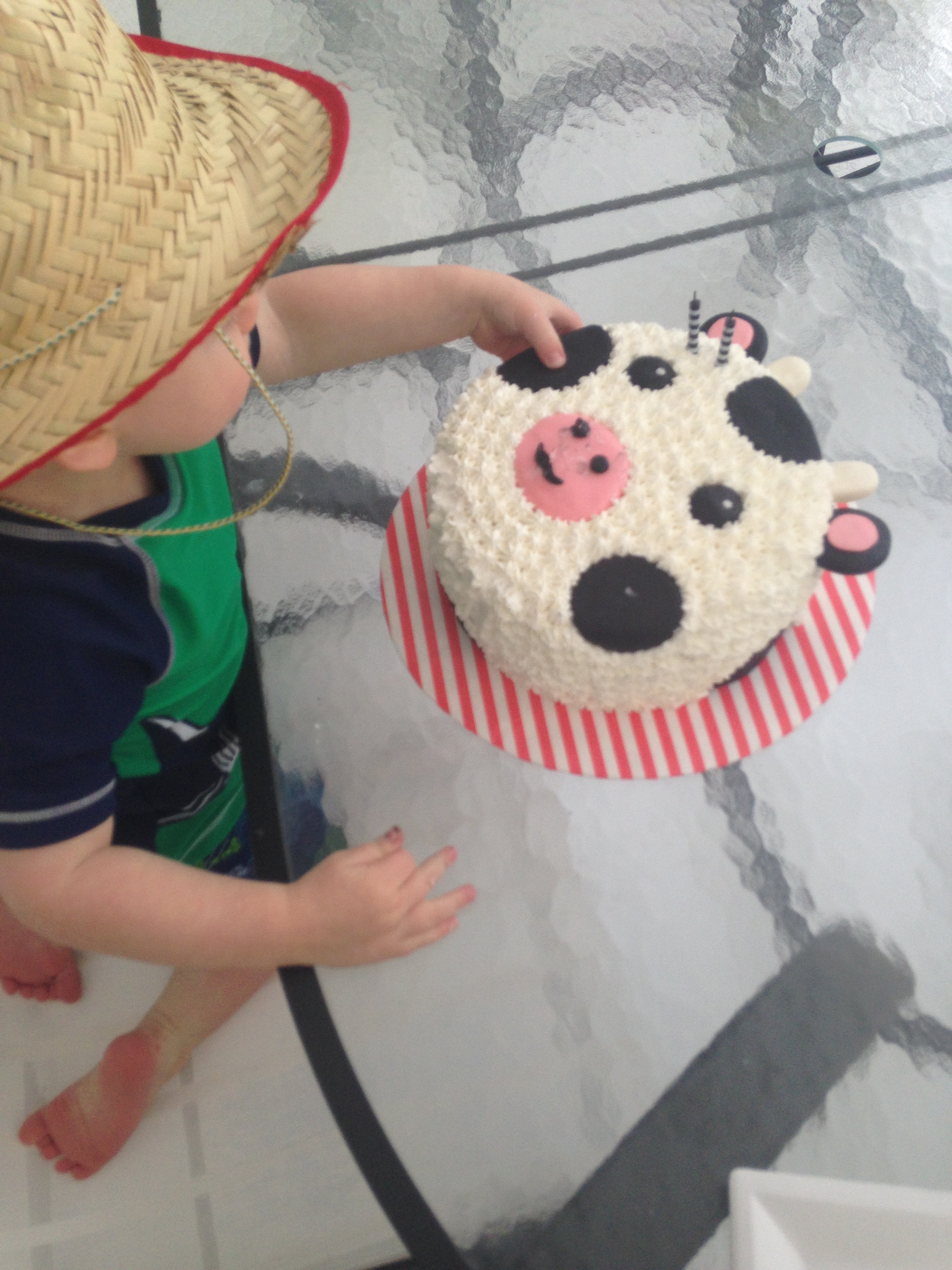 cow cake 5